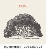 high detail vintage... | Shutterstock .eps vector #1093267325