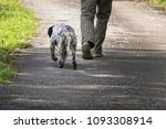 walking man's feet and hunting...   Shutterstock . vector #1093308914