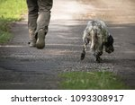 walking man's feet and hunting...   Shutterstock . vector #1093308917