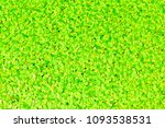 Small photo of tiny green fresh water weed as background