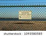 Huntington Beach  Ca   Usa  ...