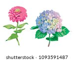 beautiful gentle flowers... | Shutterstock .eps vector #1093591487