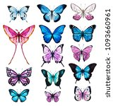Stock photo watercolor set of butterflies blue and pink butterflies on a white background 1093660961