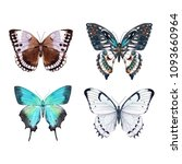 Stock photo watercolor set of a butterfly white emerald bright butterfly on a white background 1093660964