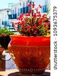 beautiful ceramic flower pot on ...   Shutterstock . vector #1093675379