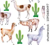 llama and alpaca with cactuses... | Shutterstock . vector #1093680497