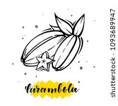 carambola in hand drawn style... | Shutterstock .eps vector #1093689947