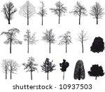 illustration of different tree | Shutterstock . vector #10937503