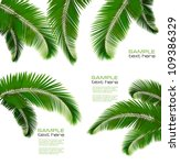 set of palm leaves on white... | Shutterstock .eps vector #109386329