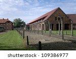 Auschwitz   August 13  Block O...