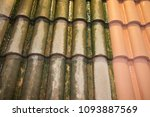 comparison roof cleaning moss... | Shutterstock . vector #1093887569