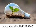 plant growing inside lamp bulb... | Shutterstock . vector #1093973165