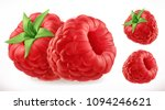 raspberries. fresh fruit 3d... | Shutterstock .eps vector #1094246621