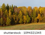 dense forest and field in the... | Shutterstock . vector #1094321345