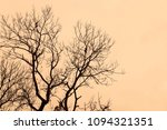 dry branches of trees against a ... | Shutterstock . vector #1094321351