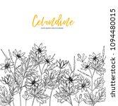hand drawn wild hay flowers.... | Shutterstock .eps vector #1094480015