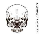 skull contour sketch for tattoo ... | Shutterstock .eps vector #1094481524