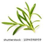 fresh rosemary isolated on white | Shutterstock . vector #1094598959