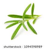 fresh rosemary isolated on white | Shutterstock . vector #1094598989