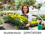 redhead young woman working in...   Shutterstock . vector #1094769284