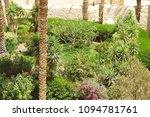 monastery st.antoniy egypt  3d... | Shutterstock . vector #1094781761
