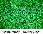 abstract green grass decoration ...   Shutterstock . vector #1094967455