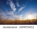 aussie farm in summer | Shutterstock . vector #1094976911