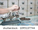 weighting star anise in herb... | Shutterstock . vector #1095137744