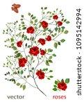 Stock vector vector rose sprig botanical illustration flower arrangement of red roses and green leaves set 1095142994