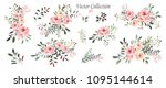 vector.  botanical illustration.... | Shutterstock .eps vector #1095144614