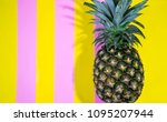 close up a whole fresh ripe... | Shutterstock . vector #1095207944