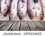 sale of fresh fish | Shutterstock . vector #1095214655