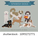dogs by country of origin.... | Shutterstock .eps vector #1095272771