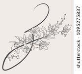 vector hand drawn flowered z... | Shutterstock .eps vector #1095275837