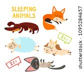 sleeping adorable animals... | Shutterstock .eps vector #1095284657