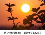 beautiful contrast picture of... | Shutterstock . vector #1095312287
