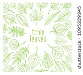 tree leaves. colorful... | Shutterstock .eps vector #1095329345