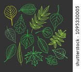tree leaves. colorful... | Shutterstock .eps vector #1095330005