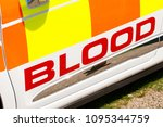 elevated view in the word blood ... | Shutterstock . vector #1095344759