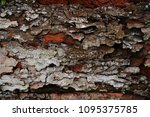 mix tree bark texture  free...   Shutterstock . vector #1095375785