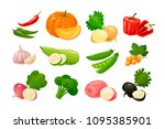 vegetables  set of colored... | Shutterstock .eps vector #1095385901