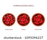 human glucose levels... | Shutterstock .eps vector #1095396227