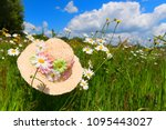straw summer hat with flowers... | Shutterstock . vector #1095443027