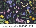 beautiful horizontal botanical... | Shutterstock .eps vector #1095451199