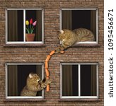 Small photo of The cat passes the bundle of sausages to his neighbor through the window.