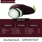 the eggplant health benefits.... | Shutterstock .eps vector #1095457037