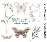 watercolor decorative floral... | Shutterstock . vector #1095460415