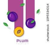 fresh plum fruit background in... | Shutterstock .eps vector #1095534314