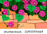 morning glory  ipomoea ... | Shutterstock .eps vector #1095595469