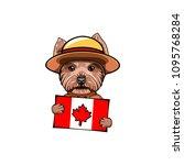 yorkshire terrier dog. canadian ... | Shutterstock .eps vector #1095768284